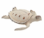 Medium Beige Turtle Statue