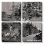 Modern Lodge Collection Gray/Black Canvas Giclee Art Print, Set of 4