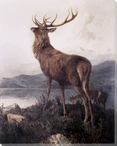 Monarch of the Glen Wrapped Canvas Giclee Print Wall Art