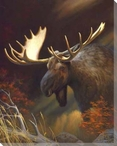 Moose Portrait Wrapped Canvas Giclee Print Wall Art