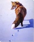 Morning News Fox in the Snow Wrapped Canvas Giclee Print Wall Art