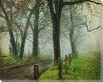 Morning on Sparks Lane IV Wrapped Canvas Giclee Print Wall Art