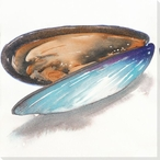 Mussel Wrapped Canvas Giclee Print Wall Art