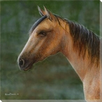 Mustang Horse Wrapped Canvas Giclee Print Wall Art
