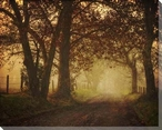 Mystic Road Wrapped Canvas Giclee Print Wall Art