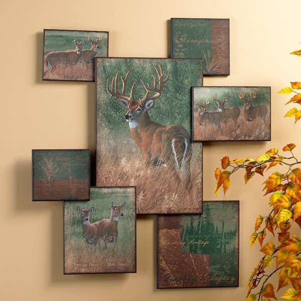 Natureu0027s Plan Whitetail Deer Wall Collage Wall Art