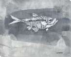 Negative Fossil Fish Wrapped Canvas Giclee Art Print Wall Art