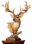 Noble Bearing Whitetail Deer Hand Painted Sculpture