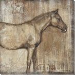 Noble Steed Horse I Wrapped Canvas Giclee Print Wall Art