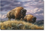 Nomads of the Plains Bison Wrapped Canvas Giclee Print Wall Art