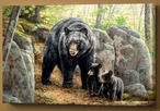 Northwoods Springtime Black Bear with Cubs Wrapped Canvas Giclee Print