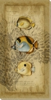 Ocean Trilogy Fish II Wrapped Canvas Giclee Print Wall Art