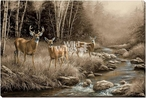 October Mist White Tail Deer Wrapped Canvas Giclee Art Print Wall Art