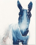 Old Boy Horse Wrapped Canvas Giclee Print Wall Art