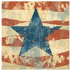 Old Glory Absorbent Coasters by John Zaccheo, Set of 8