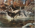On the Run Deer Wrapped Canvas Giclee Print Wall Art