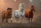 On the Run Horses Wrapped Canvas Giclee Art Print Wall Art