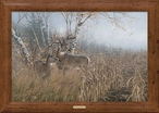 One for the Records Whitetail Deer Framed Canvas Art Print Wall Art