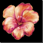 Orange Pansy Flower Wrapped Canvas Giclee Print Wall Art