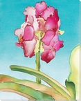 Orchid Flower Wrapped Canvas Giclee Print Wall Art