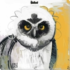 Owl Bird 6 Wrapped Canvas Giclee Print Wall Art
