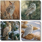 Owl Birds Wrapped Canvas Giclee Print Wall Art, Set of 4