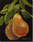 Pair of Golden Pears Wrapped Canvas Giclee Print Wall Art