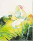Pale Lotus Flower Wrapped Canvas Giclee Print Wall Art