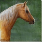 Palomino Horse Wrapped Canvas Giclee Print Wall Art