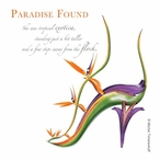 Paradise Found Beverage Coasters by Michael Tcherevkoff, Set of 12