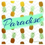 Paradise Pineapple Absorbent Beverage Coasters, Set of 12