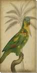 Parrot Bird & Palm II Wrapped Canvas Giclee Print Wall Art