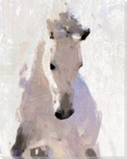 Pat's White Horse Wrapped Canvas Giclee Print Wall Art
