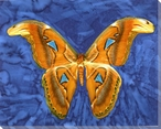 Pattern Butterfly Study Wrapped Canvas Giclee Print Wall Art