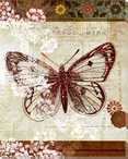 Patterned Butterfly Three Wrapped Canvas Giclee Print Wall Art