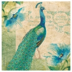 Peacock Bird Absorbent Beverage Coasters by Andrea Brooks, Set of 8