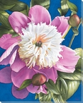 Peony 1 Flower Wrapped Canvas Giclee Print Wall Art
