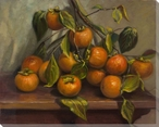 Persimmons on a Branch Wrapped Canvas Giclee Print Wall Art
