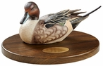 Personalized Pintail Drake Duck Qtr Life-Size Hand Painted Sculpture