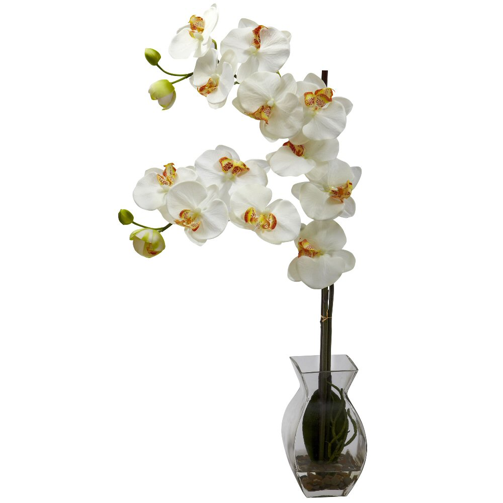 Phalaenopsis cream orchid silk flower arrangement with vase phalaenopsis cream orchid silk flower arrangement with vase mightylinksfo