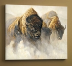 Phantoms of the Plain Bison Wrapped Canvas Giclee Print Wall Art
