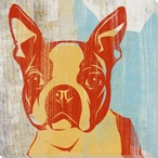 Pick the Boston Terrier Dog Wrapped Canvas Giclee Print Wall Art