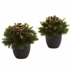 Pine & Berries Silk Plant with Black Planter, Set of 2