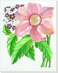 Pink Cosmo Flower Wrapped Canvas Giclee Print Wall Art