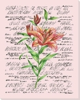 Pink Tiger Lily Flower Wrapped Canvas Giclee Print Wall Art