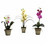 Potted Purple Yellow White Orchid Silk Flower Arrangement, Set of 3