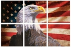 Pride Bald Eagle Bird and Flag Wrapped Canvas Giclee Print, Set of 6
