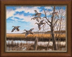 Pride of the East Black Ducks Framed Canvas Giclee Art Print Wall Art