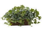 Puff Ivy Silk Plant with Ledge Basket