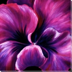 Purple Pansy Flower Detail Wrapped Canvas Giclee Print Wall Art